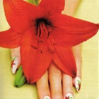 Рисунок на ногтях Лилия main