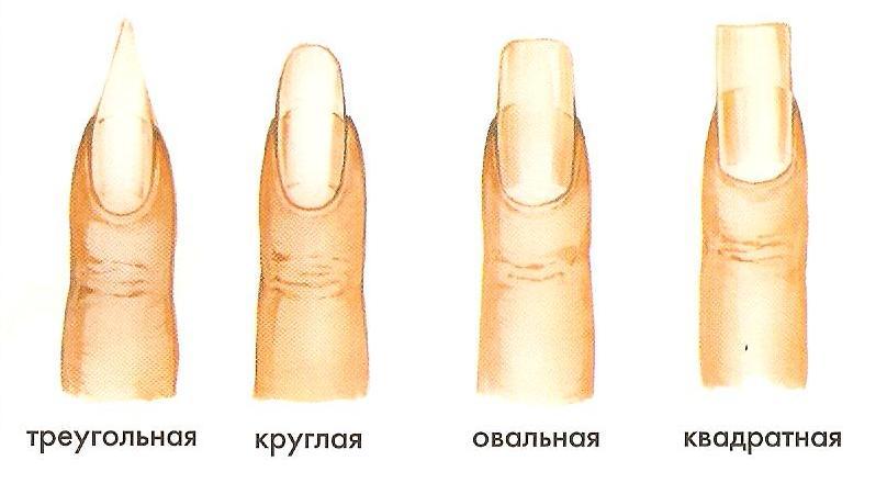 Как сделать форму ногтей овальной формы фото
