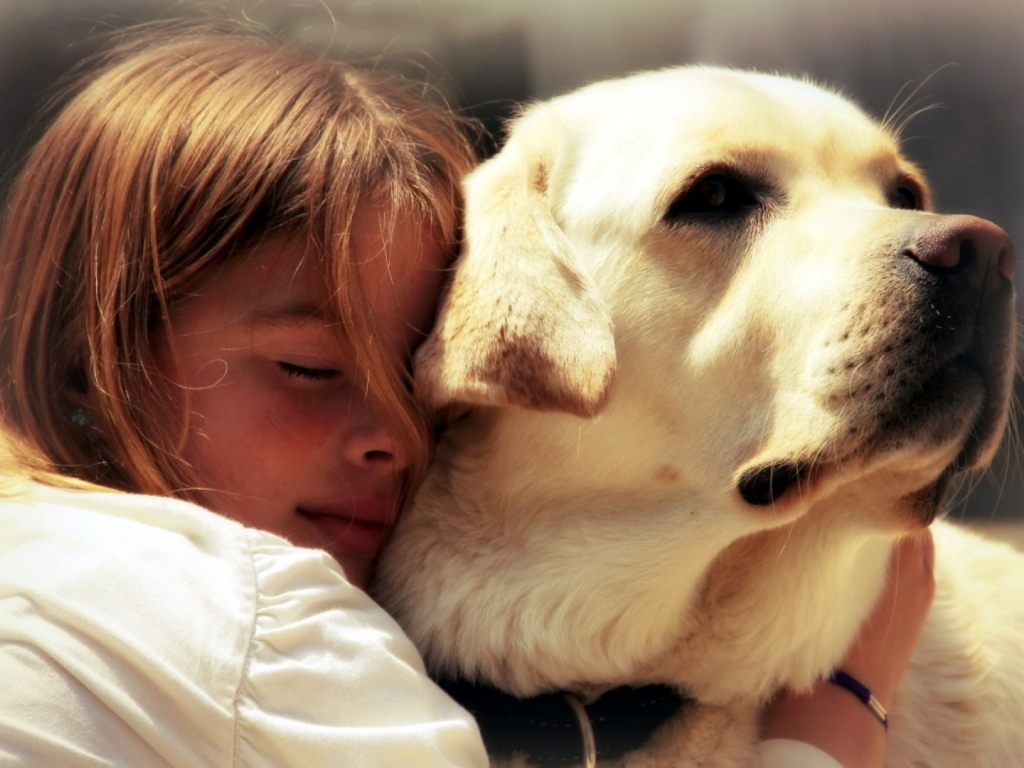 Скачать картинку бесплатно девочка, собака, друзья, настроение, фотка 403932- я, красивые обои на GoodFon.com.ua