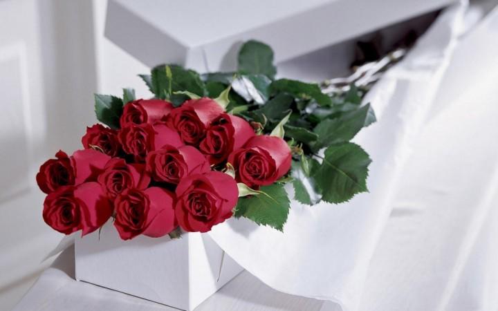 Желанный подарок для всех женщин