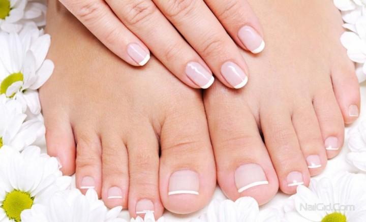 Грибок ногтей – живучая инфекция1