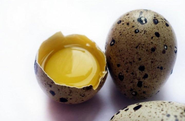 перепелиные яица 2